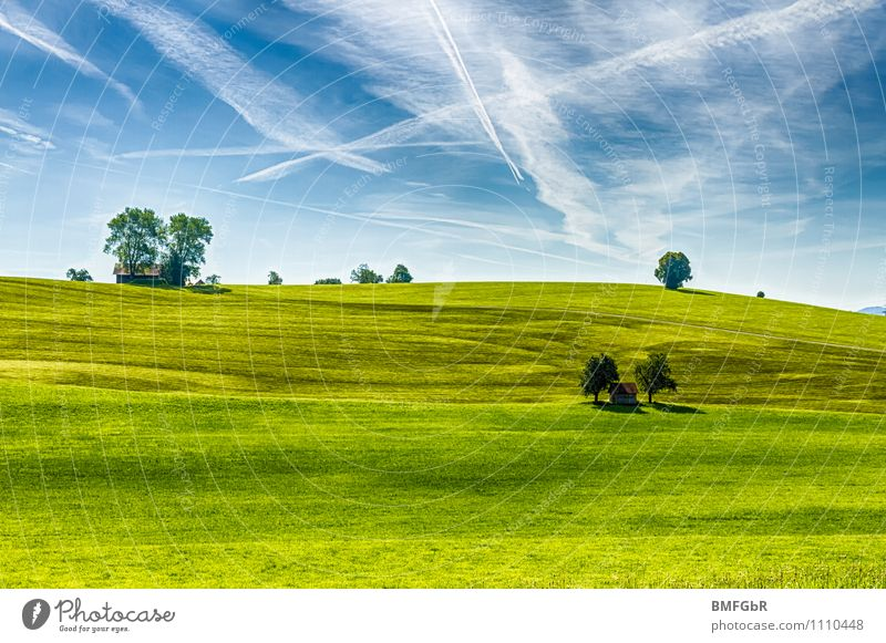 simple beauty of nature Environment Nature Landscape Plant Sky Clouds Climate Climate change Beautiful weather Tree Grass Park Meadow Hill Contentment Movement
