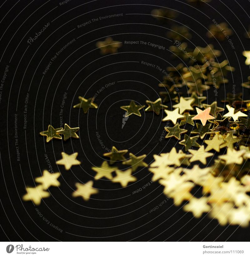Christmas & Advent Winter Moody Feasts & Celebrations Glittering Gold Star (Symbol) Decoration Magic Anticipation Glamor Festive Christmas decoration Christmas star