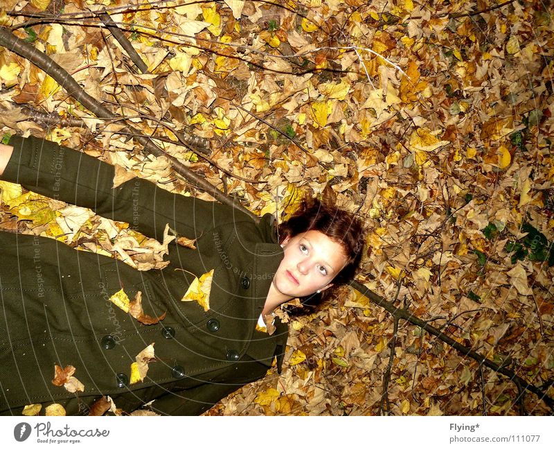 In the pergola blown away Autumn Autumn leaves Green Dark green Leaf Woman Coat Forest Alert Dreamily Corpse Find Clothing melancoly Peace Branch