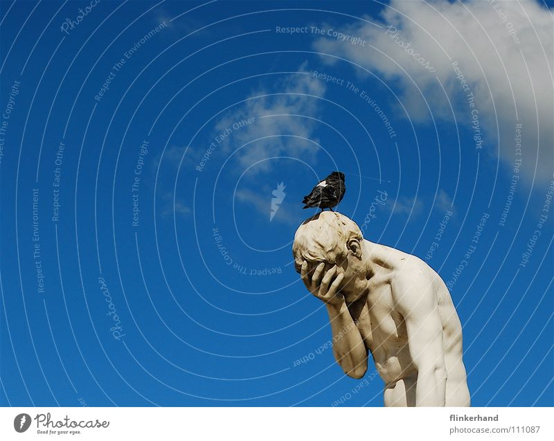 Human being Sky Man Blue White Summer Clouds Animal Adults Art Bird Body Grief Statue Distress Pigeon