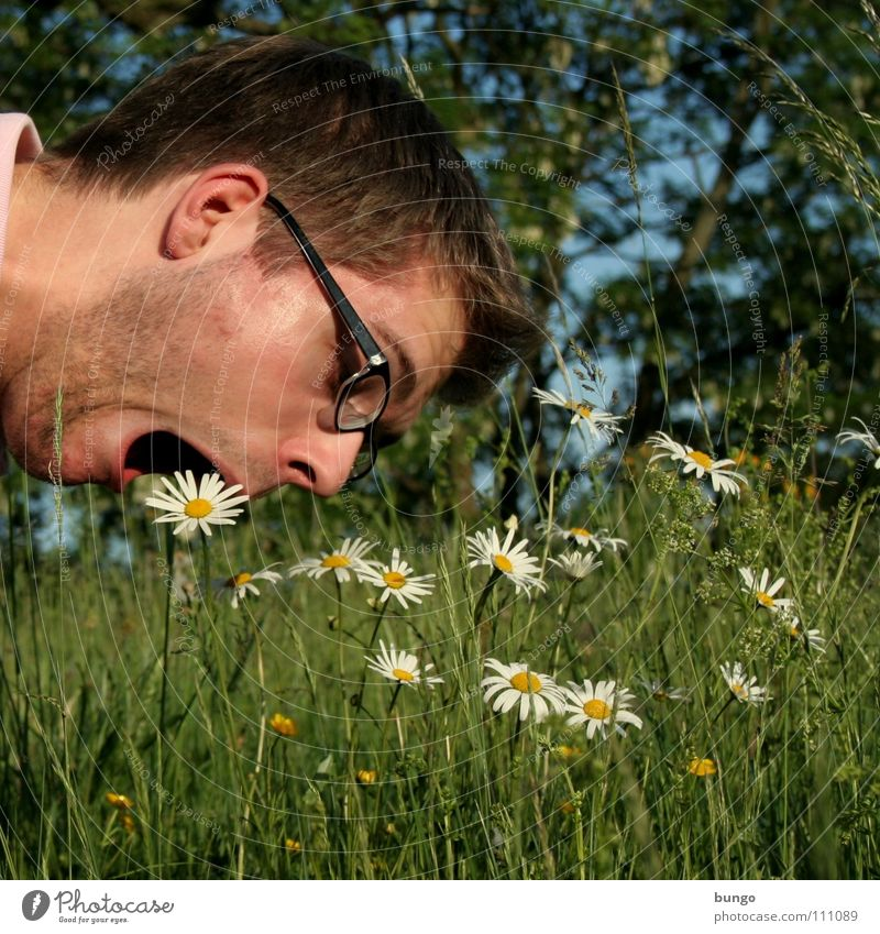 Man Nature Flower Plant Face Nutrition Death Blossom Grass Healthy Funny Eating Crazy Eyeglasses Appetite Freak