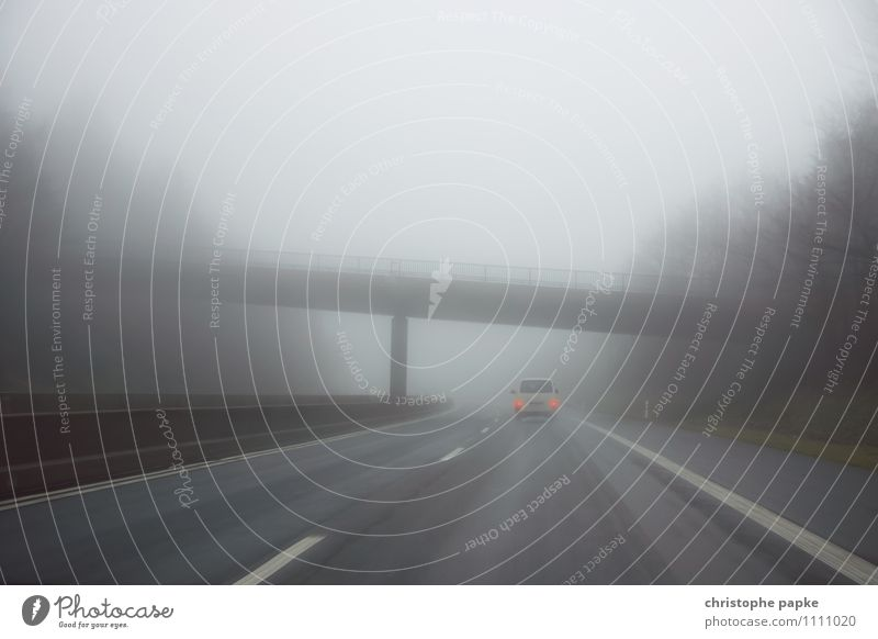 Motorway in the fog Trip Autumn Bad weather Fog Rain Transport Means of transport Traffic infrastructure Logistics Road traffic Motoring Street Highway Vehicle