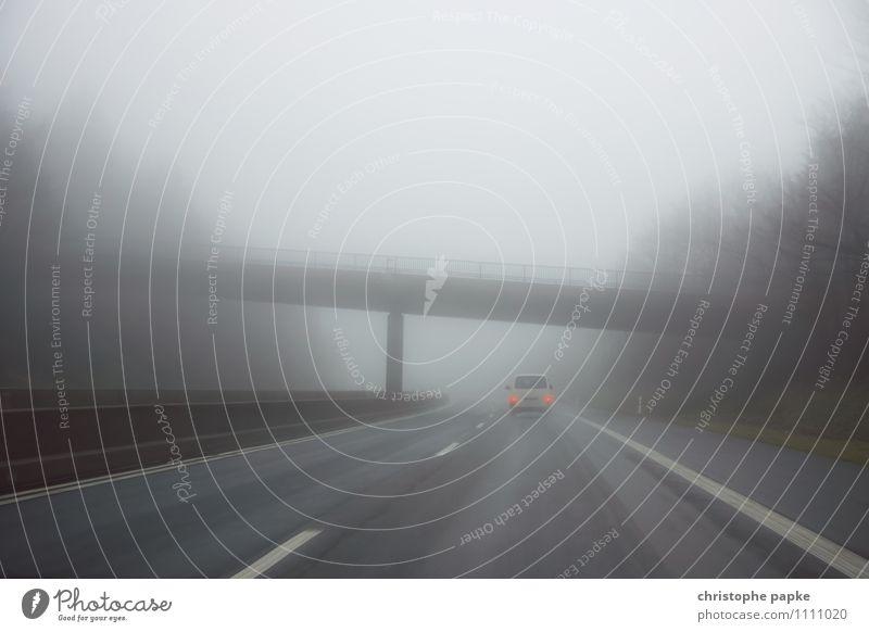 Motorway in the fog Trip Autumn Bad weather Fog Rain Transport Means of transport Traffic infrastructure Logistics Road traffic Motoring Street Highway Vehicle