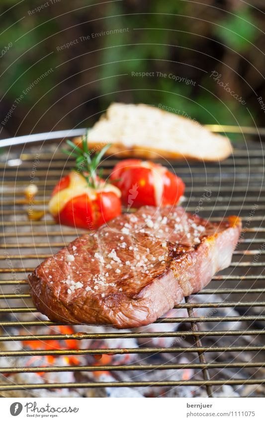 Green Red Brown Food Fire Herbs and spices Vegetable Good Organic produce Bread Meat Barbecue (apparatus) Tomato Cheese Cooking salt Cheap