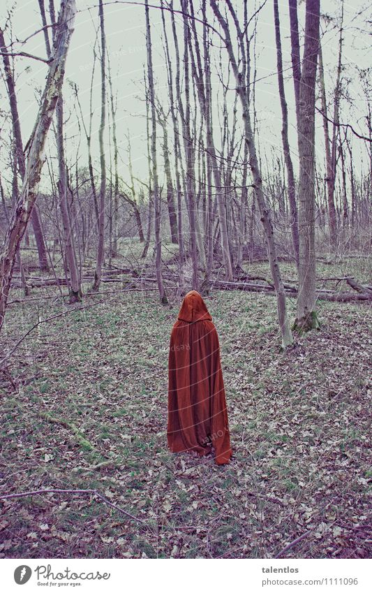 Human being Loneliness Red Dark Forest Sadness Death Gloomy Grief Creepy Coat Lovesickness Eerie Sparse Cape Perturbed