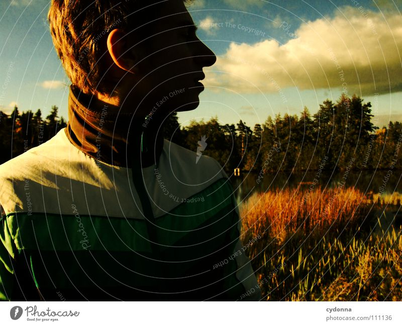 Human being Man Nature Water Beautiful Sky Clouds Forest Dark Meadow Autumn Think Lighting New Retro Vantage point
