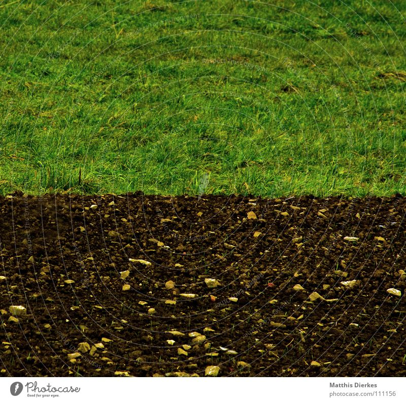 Nature Beautiful Plant Summer Loneliness Calm Death Meadow Autumn Wall (barrier) Sadness Think Lamp Line Horizon Rain