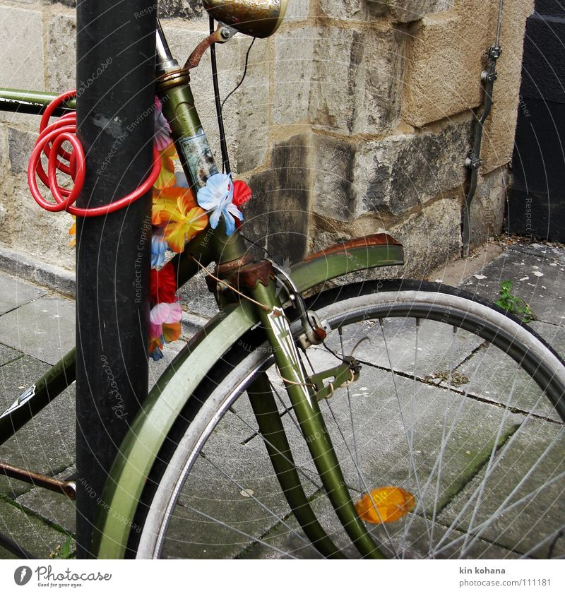 winter flowers Bicycle Castle Means of transport Street Metal Rust Old Movement Gloomy Multicoloured Gray Red To console Loneliness Colour Stagnating Transience