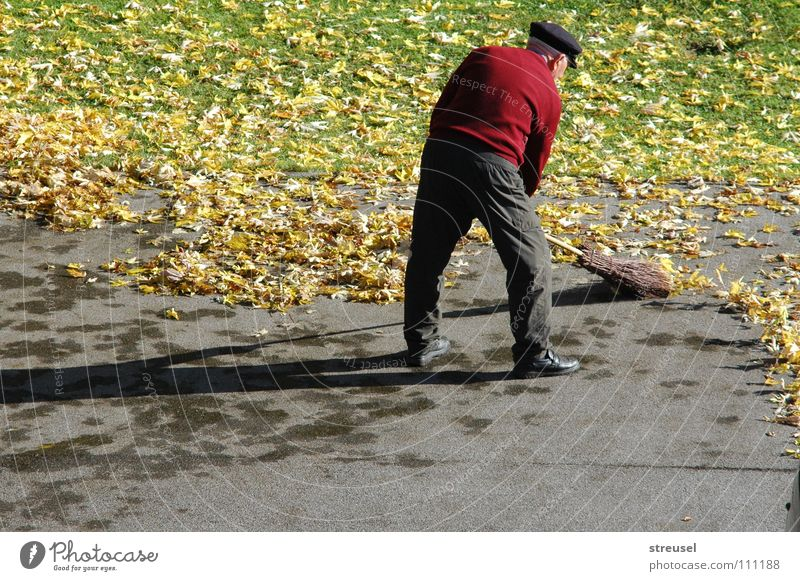 Human being Man Nature Green Red Leaf Loneliness Calm Adults Yellow Environment Street Life Meadow Autumn Senior citizen