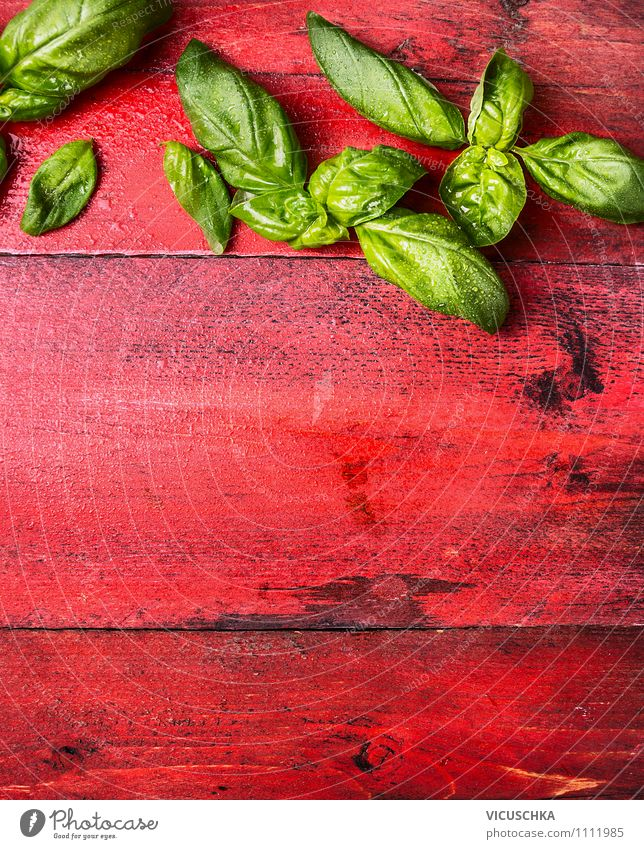 Basil on red wooden table Food Herbs and spices Nutrition Italian Food Style Design Healthy Eating Life Garden Table Kitchen Nature Background picture basil