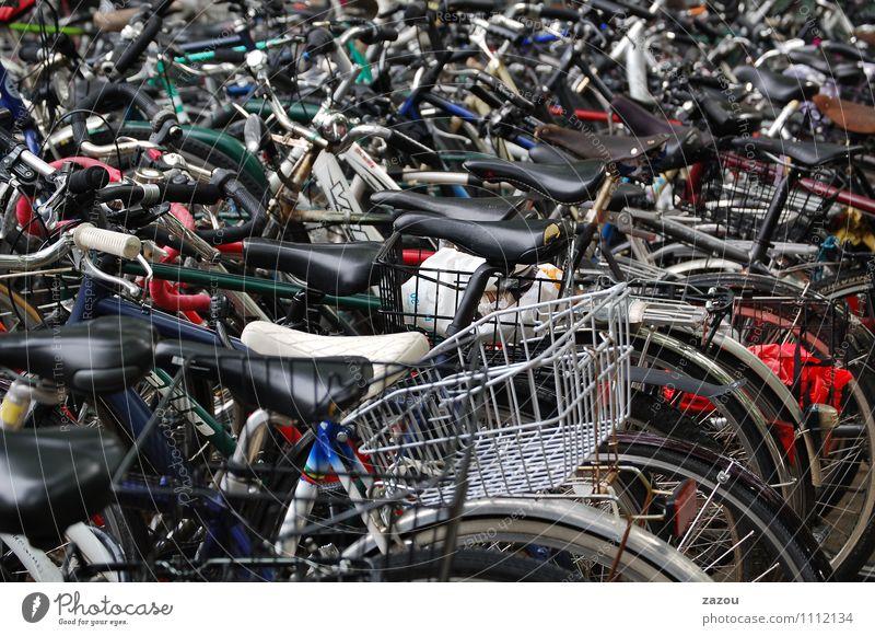 Movement Arrangement Bicycle Cycling Downtown Passenger traffic Public transit Bicycle saddle