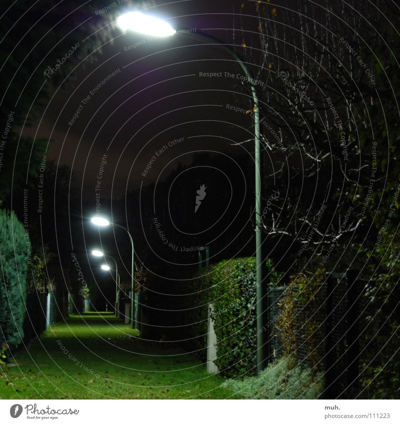 gangway Green Lantern Grass Fence Dark Night Hedge Square Fear Panic Long exposure Autumn
