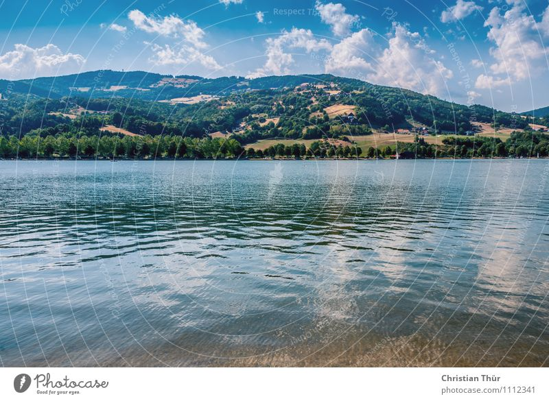 Nature Vacation & Travel Plant Water Summer Sun Tree Relaxation Landscape Calm Clouds Beach Mountain Swimming & Bathing Lake Air