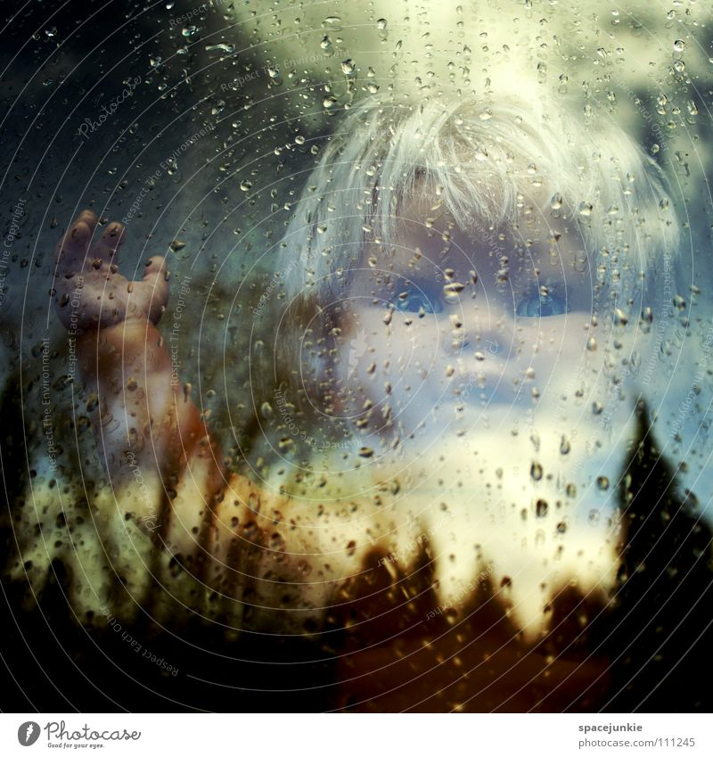 Water Sky Tree Clouds Loneliness Window Rain Fear Glass Drops of water Wet Horizon Doll Whimsical Panic