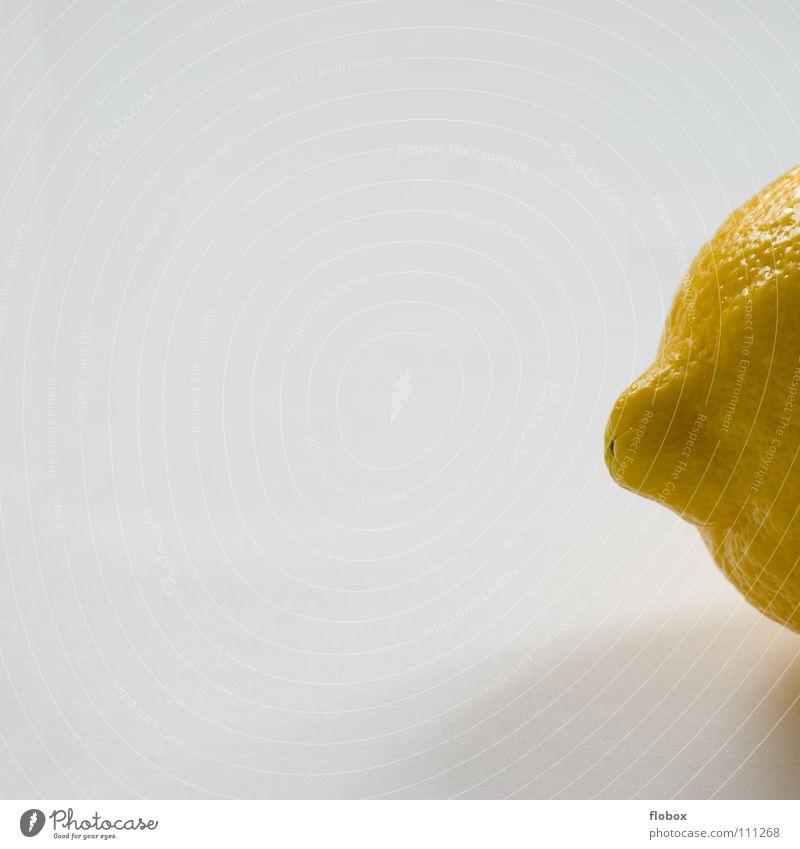 Nature Summer Yellow Nutrition Healthy Orange Fruit Fresh Round Part Anger Refreshment Cocktail Obscure Half Lemon