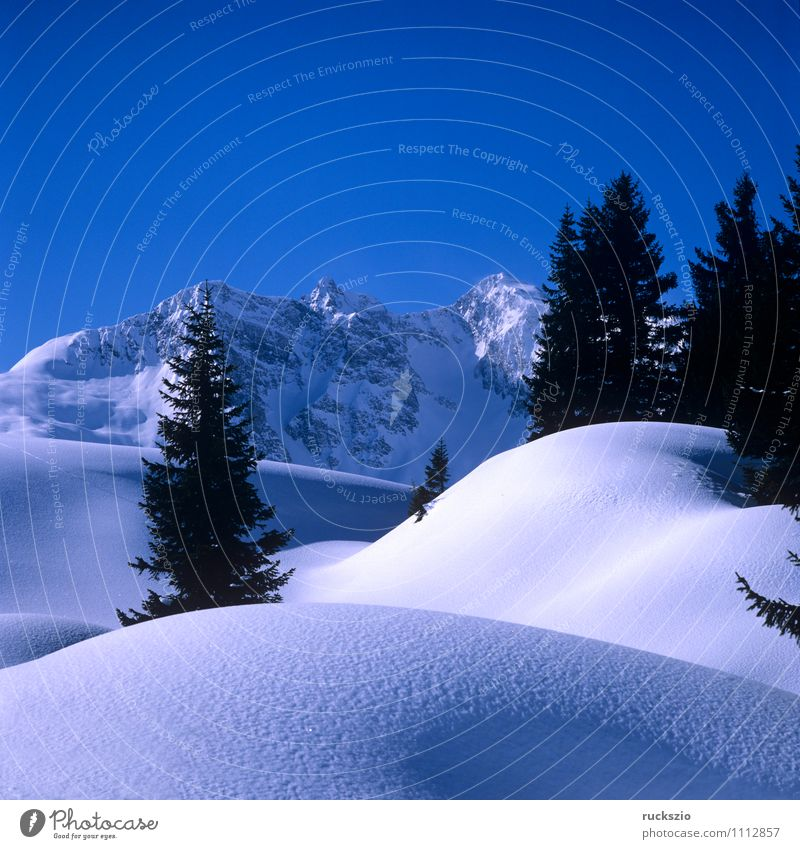 Winter landscape; Warth, Arlberg Snow Mountain Nature Landscape Tree Forest Alps Peak Cold Mount Arlberg Arlberg region Ice Impression Cold winter landscape