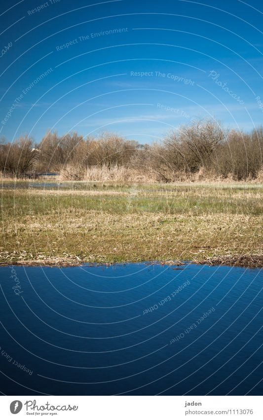 three-tier. Fishing (Angle) Environment Nature Landscape Plant Earth Water Sky Clouds Spring Field Lakeside Fresh Wet Blue Equal River Level scrub Colour photo