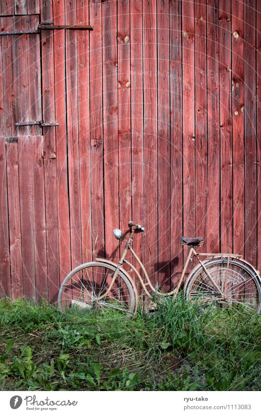 left ajar Meadow Bicycle Hut Barn Wood Retro Green Red Spring fever Serene Calm Old Second-hand Colour photo Multicoloured Exterior shot Deserted Copy Space top