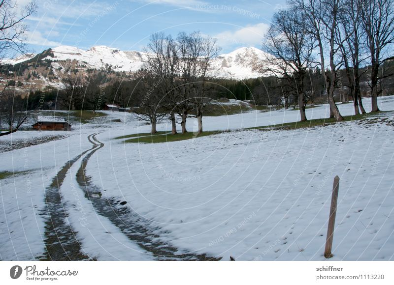 Almöhi today has four-wheel drive Landscape Beautiful weather Ice Frost Snow Hill Rock Alps Mountain Peak Snowcapped peak Cold Tracks Skid marks Alpine pasture