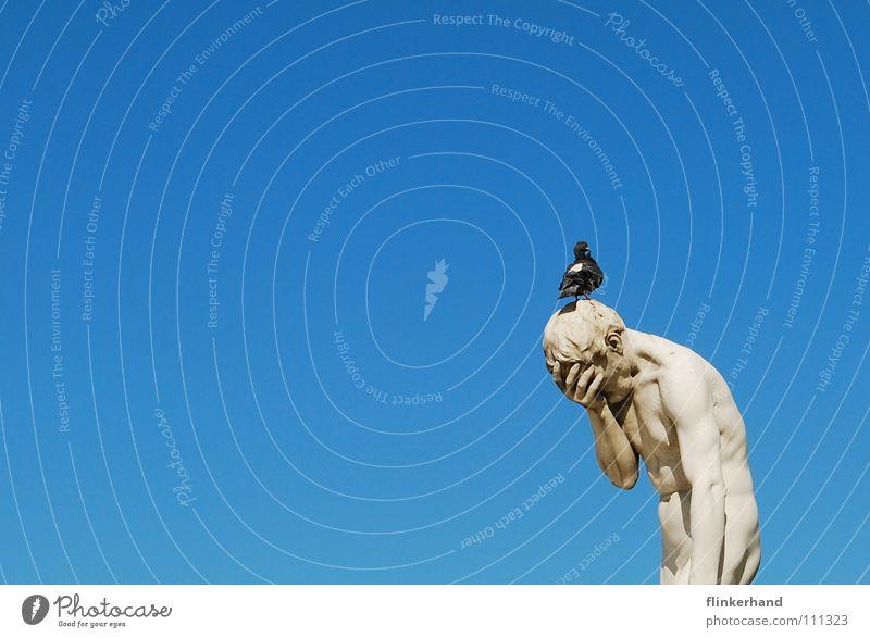 disrespectful II Body Summer Human being Man Adults Animal Sky Clouds Bird Pigeon Muscular Blue White Grief Distress Respect Contempt Paris Statue Ancient