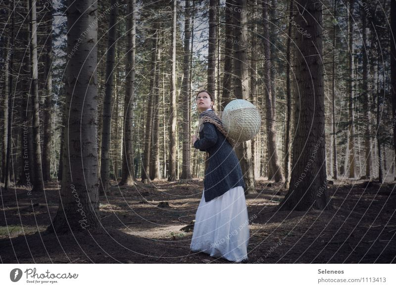 Human being Woman Nature Forest Adults Environment Feminine Gloomy Net Caution Woodground Cardigan Bird's egg