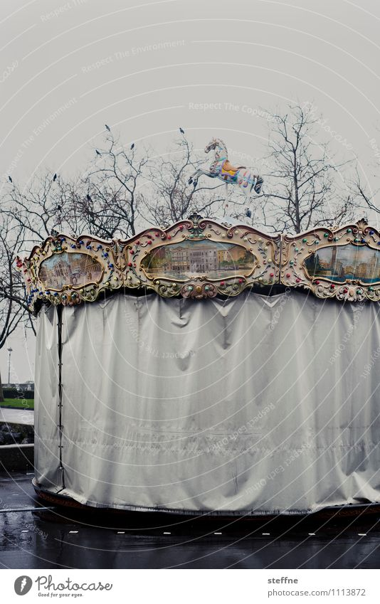The fun is over Leisure and hobbies Bad weather Gloomy Rain End of the season Spring Autumn Raven birds Tree Carousel Hobbyhorse Amusement Park Closed Sadness
