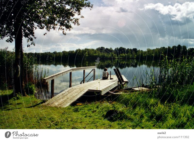 adagio Relaxation Calm Far-off places Summer Young woman Youth (Young adults) 1 Human being Environment Nature Landscape Plant Water Clouds Horizon Climate