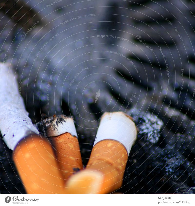 White Black Death Gray Feasts & Celebrations Orange Dirty Blaze Search Smoking Trash Smoke Cigarette Obscure Odor Disgust
