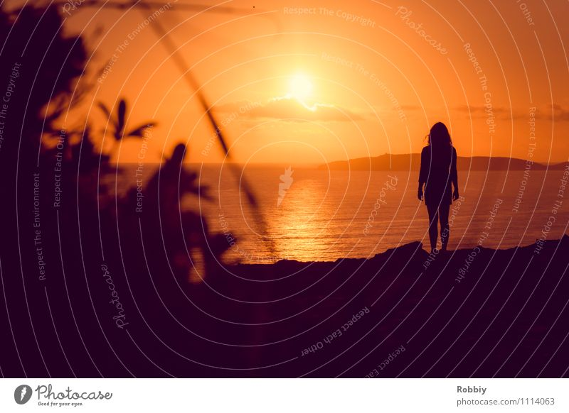 l'homme II Human being Woman Adults 1 Nature Landscape Horizon Sun Sunrise Sunset Sunlight Coast Beach Ocean Pacific Ocean Australia Looking Stand Authentic