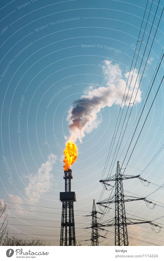 Exceptional Tall Beautiful weather Industry Tower Blaze Fire Industrial Photography Smoke Cloudless sky Hot Electricity pylon Exhaust gas Burn Flame Chimney