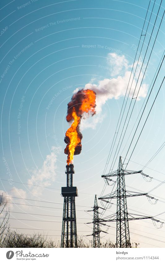 Exceptional Tall Threat Beautiful weather Industry Blaze Tower Fire Smoke Cloudless sky Hot Electricity pylon Exhaust gas Burn Flame Chimney