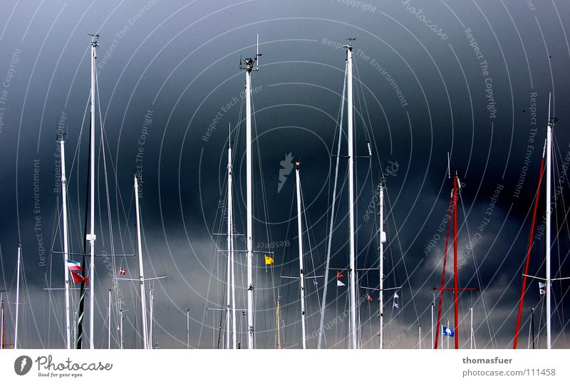 Sky Ocean Watercraft Fear Safety Esthetic Harbour Gale Sailing Thunder and lightning Electricity pylon Aquatics Heavy Fascinating Tense