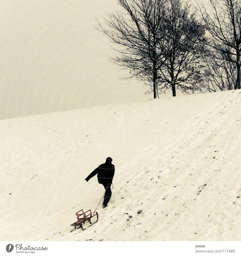 Man Tree Joy Winter Snow Playing Success Hill Upward Fight Pull Sleigh Conquer Sledding Bite through Toboggan run