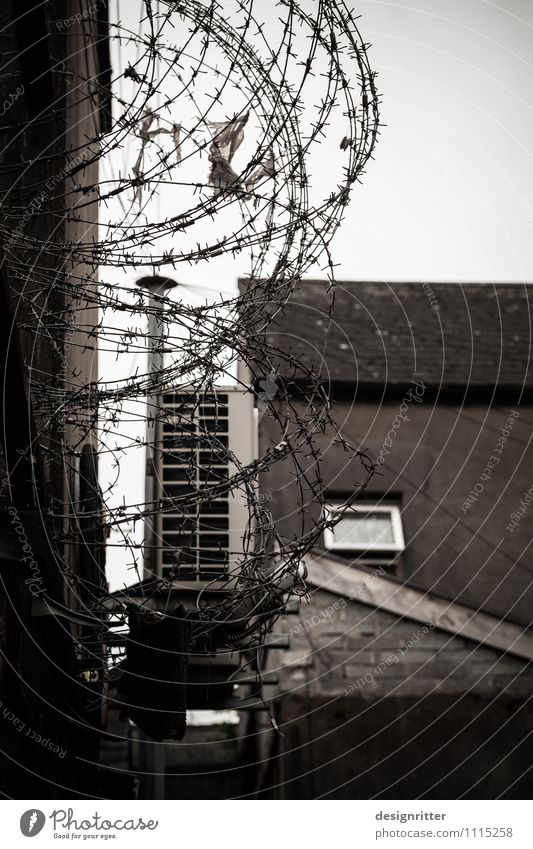 Everyday state of emergency Town House (Residential Structure) Wall (barrier) Wall (building) Window Roof Courtyard Backyard Fence Barbed wire Barbed wire fence