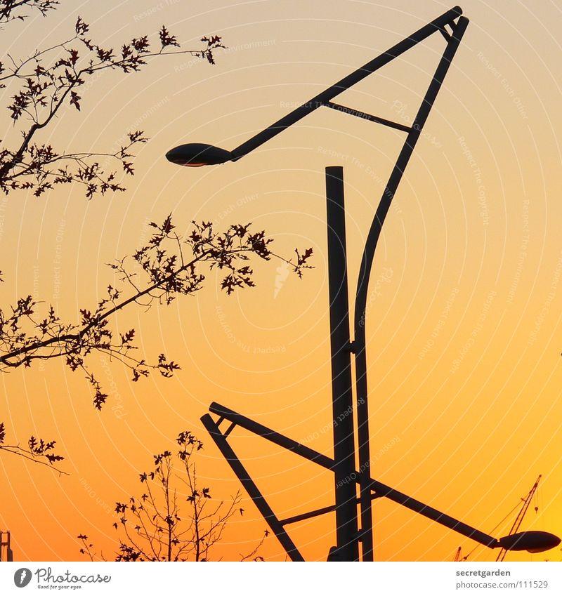 laaaterne, lantern, sun, moon and steeeeerne Lantern Sunset Winter Autumn Summer Tree Bushes Room New Leaf Silhouette Sky Street lighting Romance Design