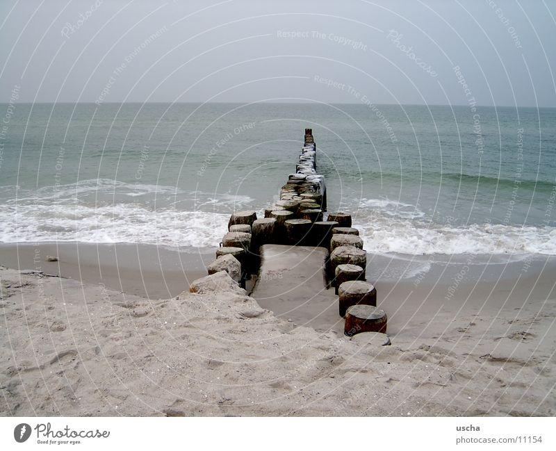 Ocean Beach Sand Beach dune