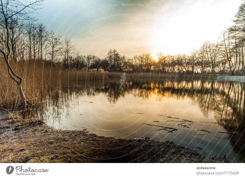 "millpond Landscape Water Sky Night sky Sunrise Sunset Beautiful weather Lakeside Pond Emotions Contentment Romance Peaceful Serene Calm Loneliness ""Mill pond"