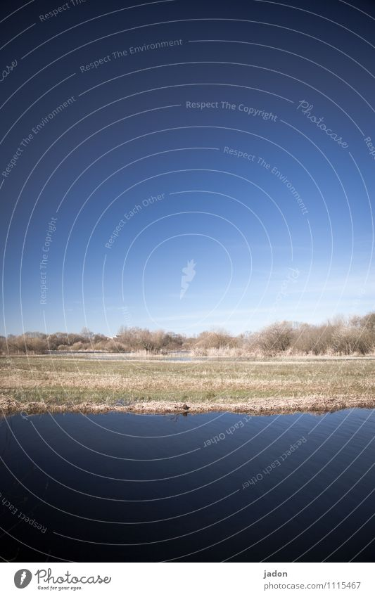motionless landscape, 3-ply. Water Blue Lake River River bank Deserted Nature river landscape Grass Meadow Colour photo Environment Sky Green Plant