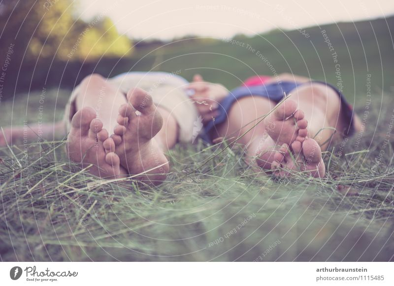 Feet in the hay Lifestyle Joy Vacation & Travel Summer Garden Human being Masculine Feminine Young woman Youth (Young adults) Young man Couple Partner 2