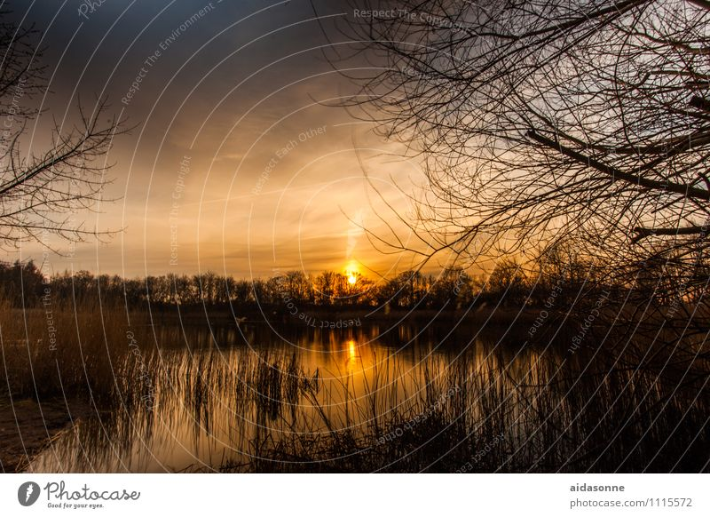 millpond Landscape Water Night sky Sunrise Sunset Beautiful weather Pond Contentment Romance Calm Fatigue Loneliness Rostock Mecklenburg-Western Pomerania
