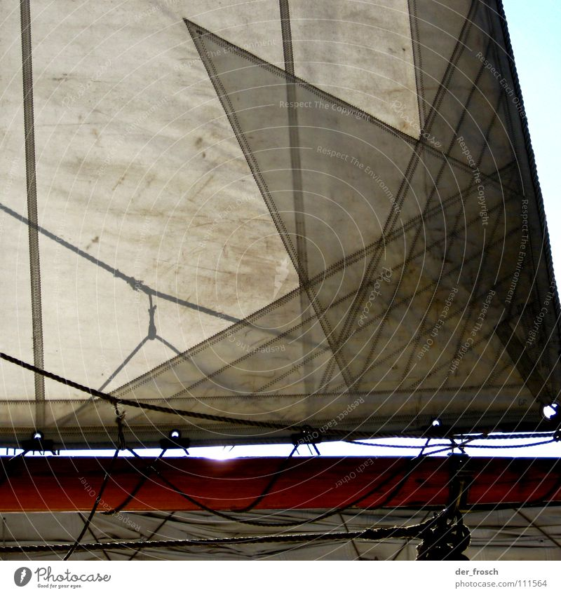 canvas Sailing Watercraft Back-light White Wanderlust Navigation Ahoy Aquatics Sports Playing Electricity pylon boot tree Shadow leech mainsail clew Rope Sheet