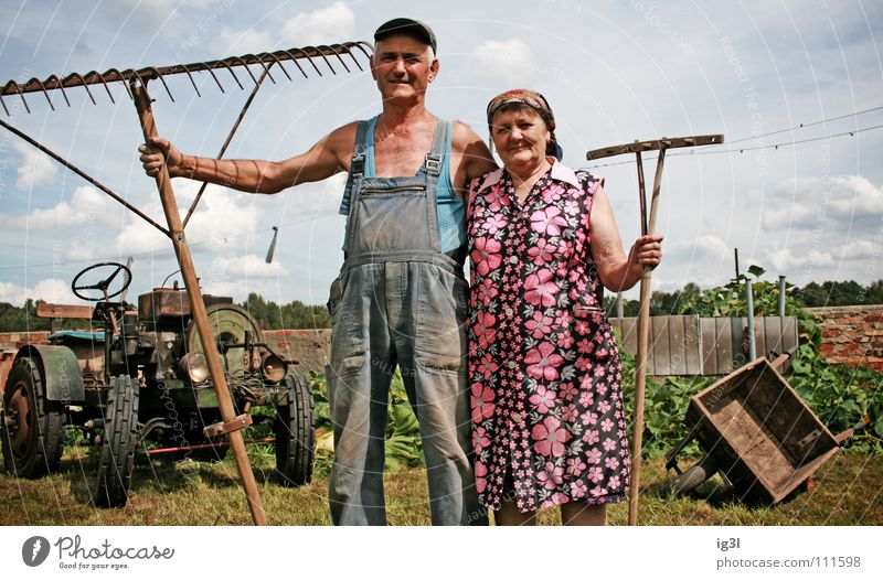 Human being Woman Sky Man Blue Old Green Beautiful Red Animal Love Meadow Working man Grass Happy Couple