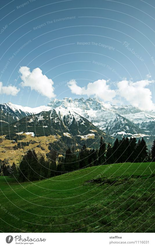Sky Vacation & Travel Tree Landscape Clouds Winter Forest Mountain Spring Meadow Tourism Hiking Beautiful weather Peak Alps Snowcapped peak