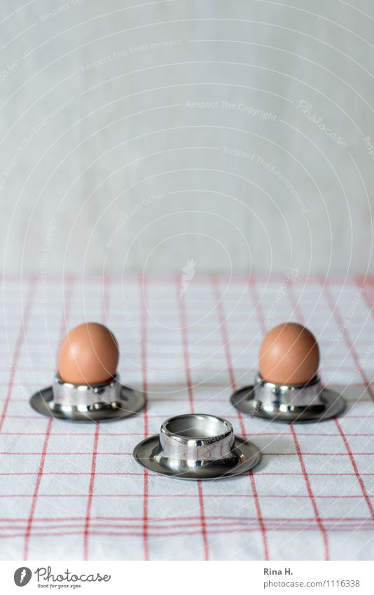 Food Nutrition Grief Egg Tablecloth Lose Dish towel Egg cup