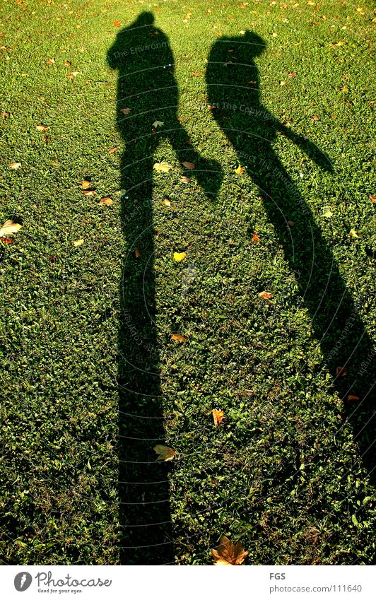 Human being Green Beautiful Sun Joy Leaf Meadow Autumn Warmth Grass Funny 2 Feasts & Celebrations Weather Going Speed