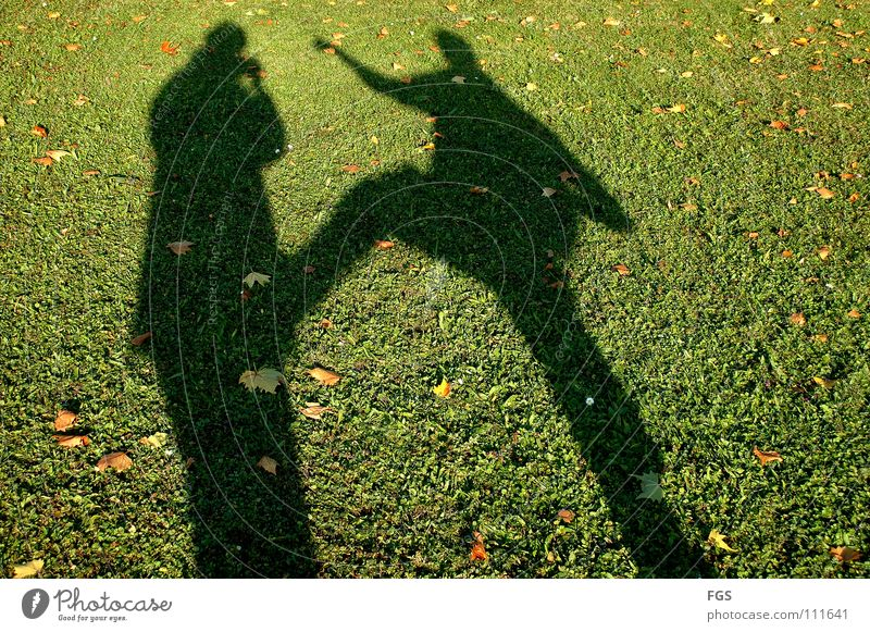Human being Beautiful Sun Green Joy Leaf Sports Meadow Autumn Playing Grass Warmth 2 Feasts & Celebrations Funny Going