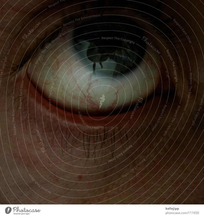 an apple doesn't fall far from the tree. Scream Fear Panic Vessel Stringer Emotions Near Escape Tear open Pupil Eyelash Eyebrow Organ Senses Freckles Pore
