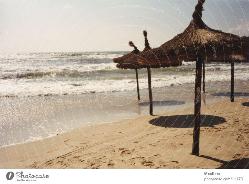on the beach Beach Surf Waves Straw parasols
