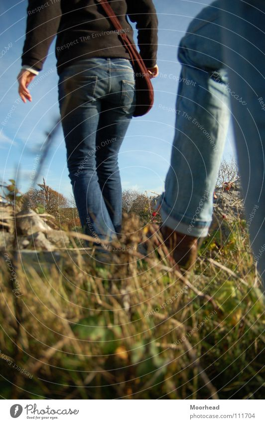 cross-country Hiking Autumn Meadow To go for a walk over rough and smooth Legs Jeans Cross-country 2 Stride Going Grass Detail Exterior shot Bottom