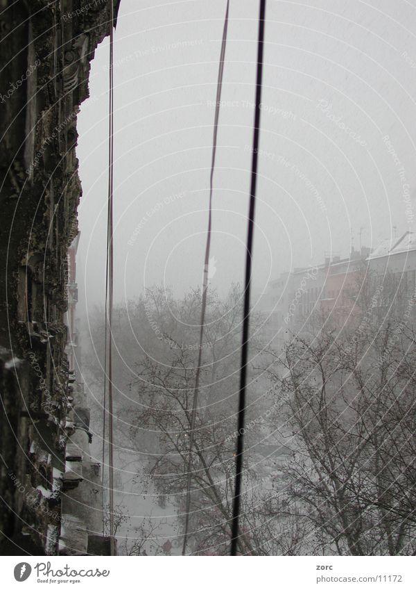 berlin winter Town Winter Architecture Berlin Old Snow